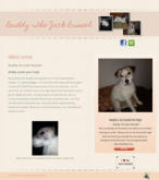 Buddy The Jack Russle Terrier Landing Page Located in Las Vegas, Nevada